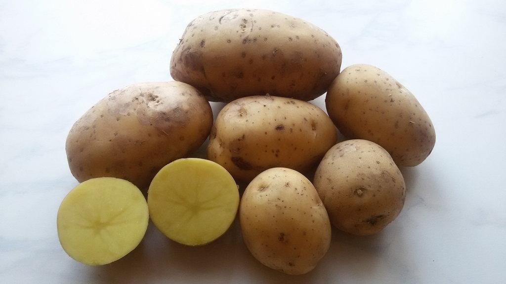 Сорт картофеля Нандина: фото, характеристика, отзывы